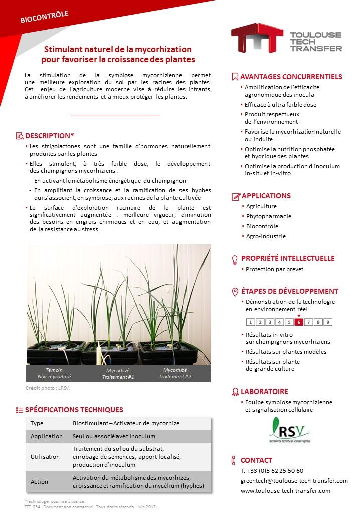 stimulant naturel de la mycorhization pour favoriser la croissance des plantes toulouse tech. Black Bedroom Furniture Sets. Home Design Ideas